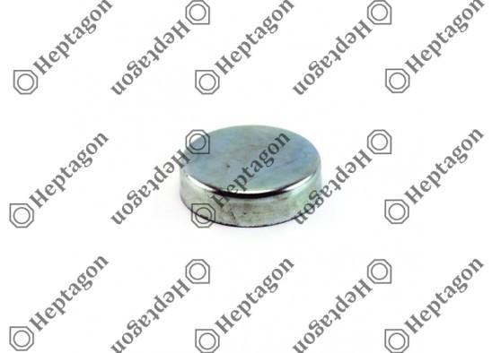 CALIPER PIN CAP  / 9104 120 071