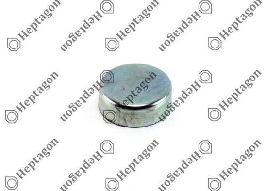CALIPER PIN CAP / 9104 120 079 / BPW: 02.0601.19.00,  0206011900