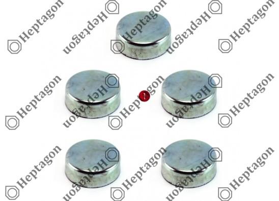 CALIPER PIN CAP SET / 9104 120 097